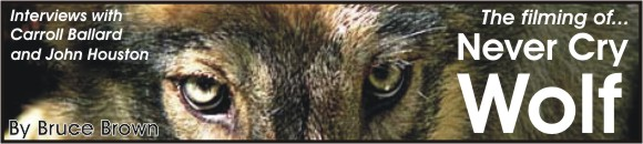 Astonisher.com 'Never Cry Wolf' banner