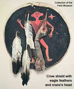 Crow shield with eagle feathers and crane's head