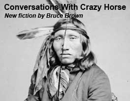 Conversations With Crazy Horse by Bruce Brown on Astonisher.com