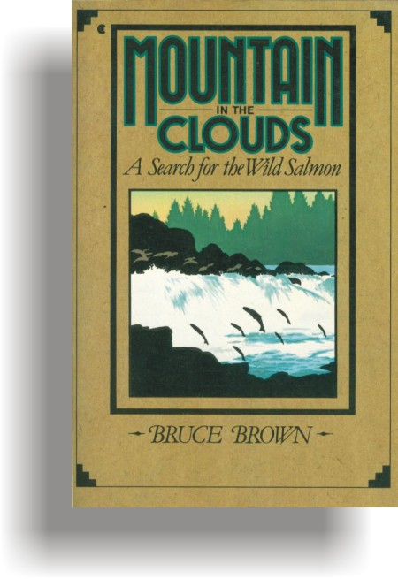 Mountain In The Clouds by Bruce Brown (first edition cover)